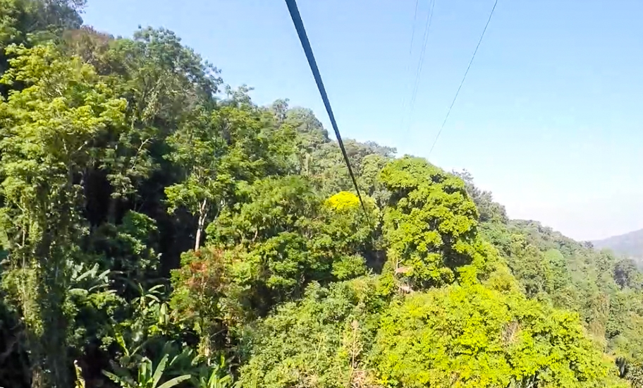 Captured midway along the 800m zip-line, Flying Gibbon Chiang Mai