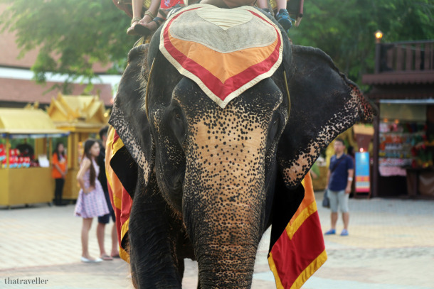 What to do in phuket when it rains: Fantasea