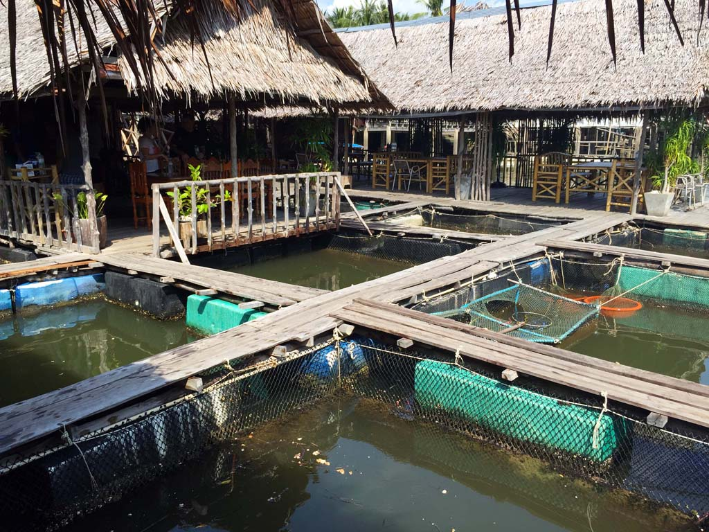 Krabi Eco Tours - Koh Klang floating restaurant