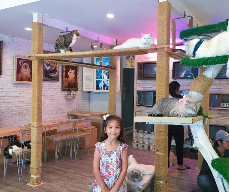 Bangkokwithkids-CaturdayCafe-CatTree