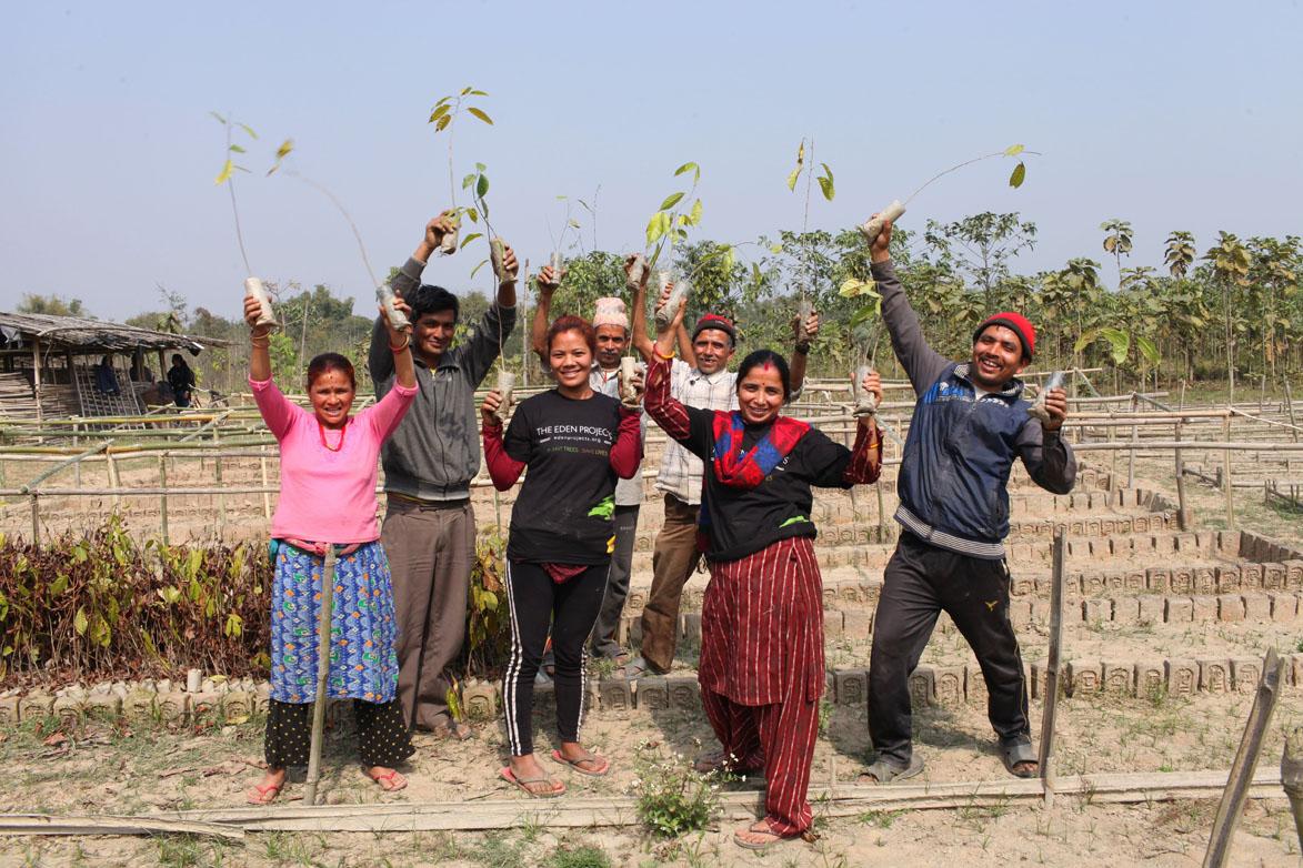 B'n'Tree Eden Happy Workers
