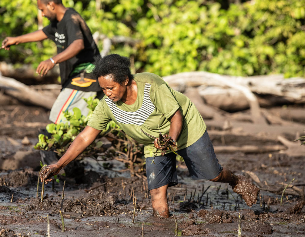 B'n'Tree Mangrove Planting Madagascar B'n'Tree