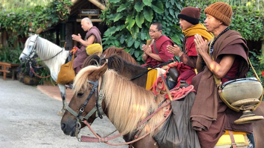Chiang Rai monks on horseback